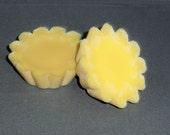 Handmade Soy Tarts-Monkey Farts