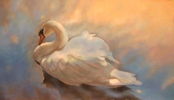 Transformation Sunset Swan fine art reproduction by Leslie Macon