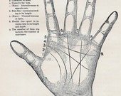 Palmistry Science Of Reading The Hand  Vintage Phenology Chart Medical Quackery 1908