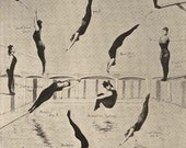 Annette Kellerman's Feats Of Diving Swimming Fitness Illustration Chart 1920s Roaring Twenties Woman