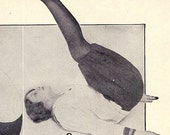 1918 Silly Fitness Ephemera. Helen Demonstrates Her Amazing Athletic Prowess