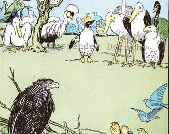 Meeting of The Birds by Hugh Spencer 1927 Vintage Nursery  Illustration To Frame