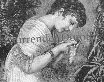 Pretty Girl Dead Bird Creepy Original Vintage Victorian Illustration For Framing 1892 Black & White