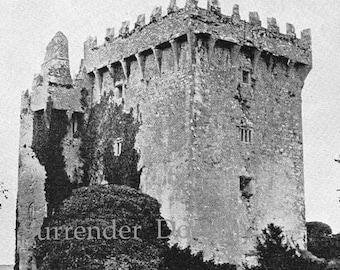 Blarney Castle Ireland Antique Photo Print 1890s Original Victorian Rotogravure Illustration To Frame