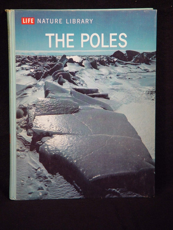 1962 The Poles Lavishly Illustrated Life Book Vintage Natural History For Children