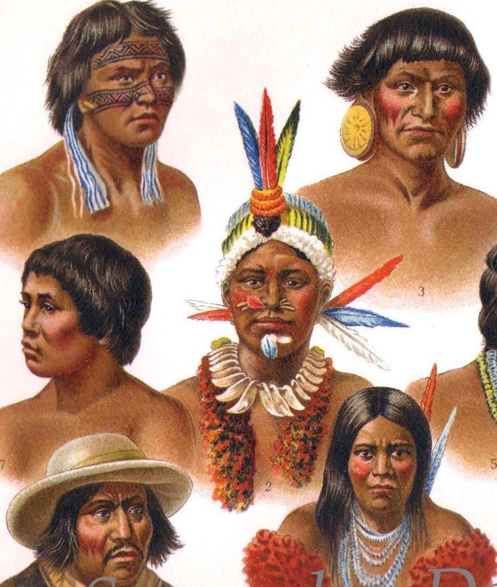 an analysis of the cultural assimilation of the native americans and mestizos of mexico - comparing the assimilation into american culture of the irish and the native american many people would agree that the irish have been - charles eastman made great strides to bridge the gap between the native americans and the white man born a santee sioux, eastman excelled in his.