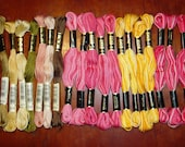 19 Skeins of DN and DMC Embroidery Floss