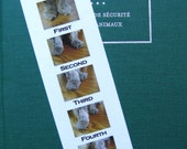 Kitty Feet in the Five Ballet Positions Bookmark