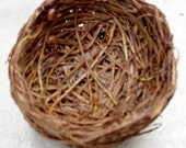 Birds nest of Natural Materials qty 4- 3 inch  BC fund
