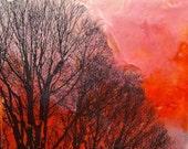SALE! Tree 1 Original Encaustic Painting with Image Transfer