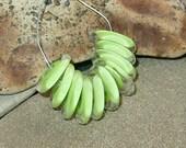 BHG  Pale lime botanica discs