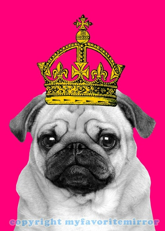 Pug In A Crown Print Matted So Cute Pet Dog Pop By