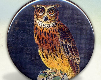 Owl mirror tartx
