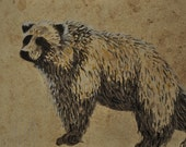 Grizzly Bear Small Drawing on paper