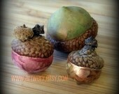 Handmade Acorns with Real Caps - Set 6 - Free Shipping
