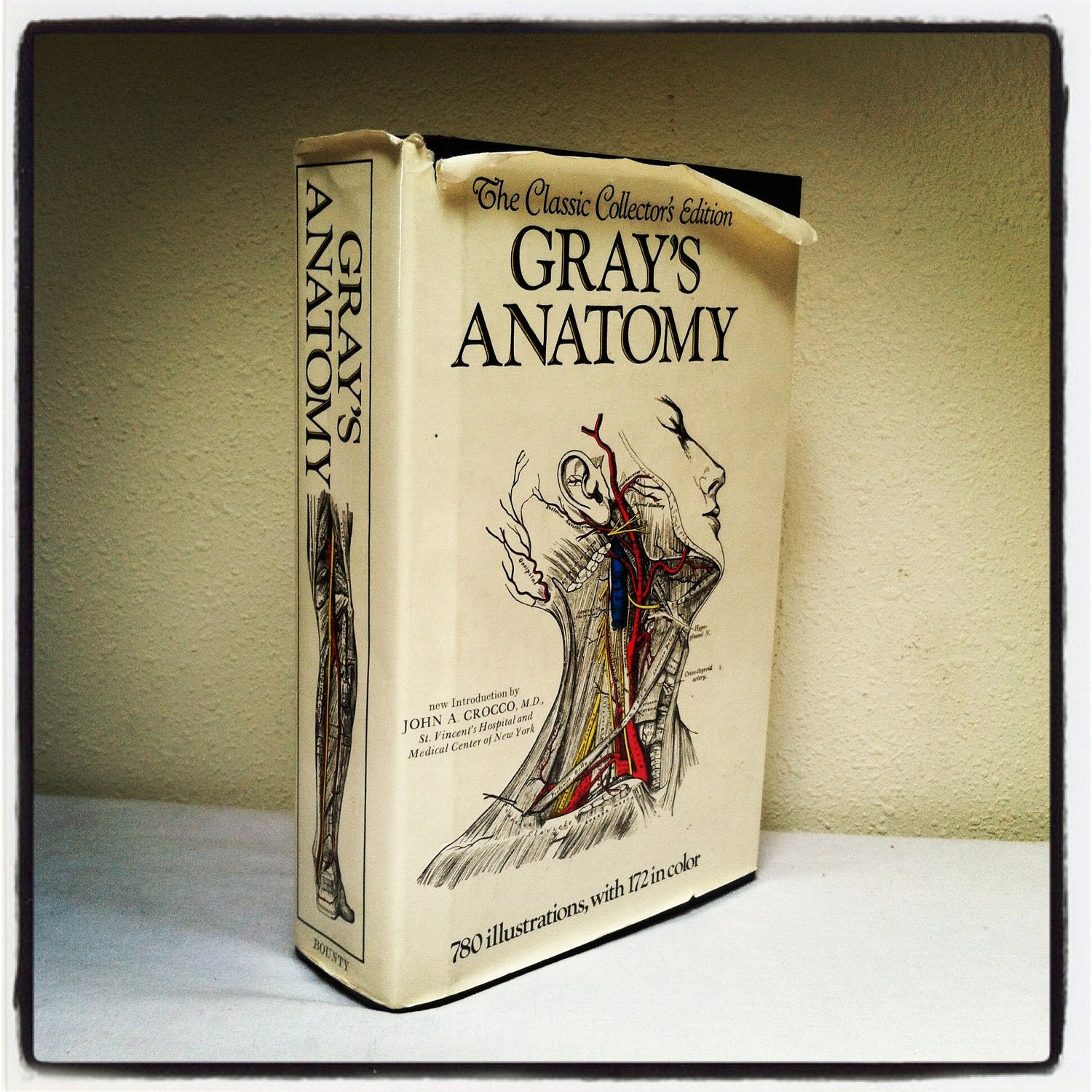 gray s anatomy review book online