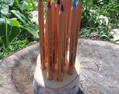 Rustic Natural Wooden Large Pencil Birch Branch Holder Back to School Early Childhood
