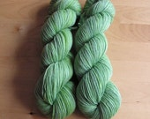 STRING BEAN NSS - S. AMERICA Handpainted Sunshine Yarns