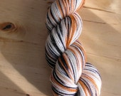 TIGER Handpainted Sunshine Yarns Superwash
