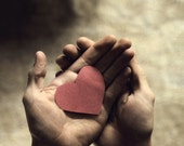 Have A Heart - boywonder