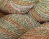 Winter Squash Sport Weight Cormo Wool Yarn Handpainted with Natural Dyes - UPDATED