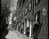 Boston Cobblestone