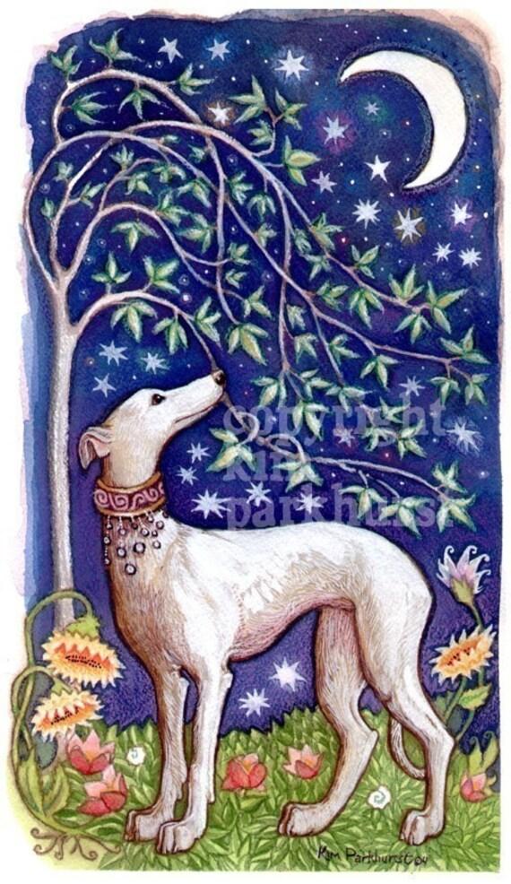 Greyhound Dog Moon Stars Whippet Signed Art Print