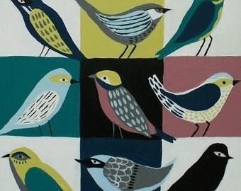 How To Identify Birds