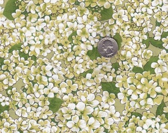 Fat quarter - Morning Garden in Apple - Michael Miller cotton quilt fabric