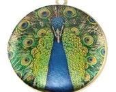 Altered Art PHOTO LOCKET - Fancy Peacock - BLUE