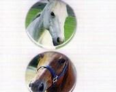 Horses Pinback Button Set (2)