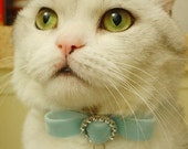 Paris II - The Cute Collar for Your Lovely Cat