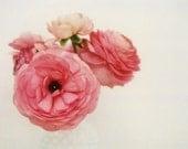 Polaroid Photograph - Flower Photography - Nature Photograph -  Pink - Fine Art Photograph - Ranunculus - Spring Art - Home Decor