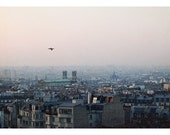 Paris Photograph - Paris- France - French Photography - City -  Origin - Original Fine Art Photograph - Bird - City - FIne Art - Alicia Bock