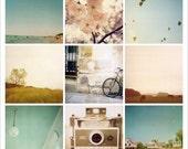 The Polaroids- Calm and Cool- Limited Edition Fine Art Print - Paris - Horses - Michigan - Beach - Summer