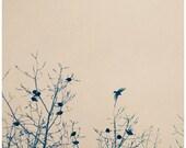 Nature Photograph - Bird Art - Bird Photography - The One That Got Away- Original Fine Art Photograph