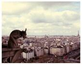 French Photography - Paris Photograph - Eiffel Tower - City - La Cite- Original Signed Fine Art Photograph