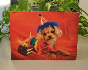 Gay Pride Greeting Card - Birthday Card - LGBTQ Card