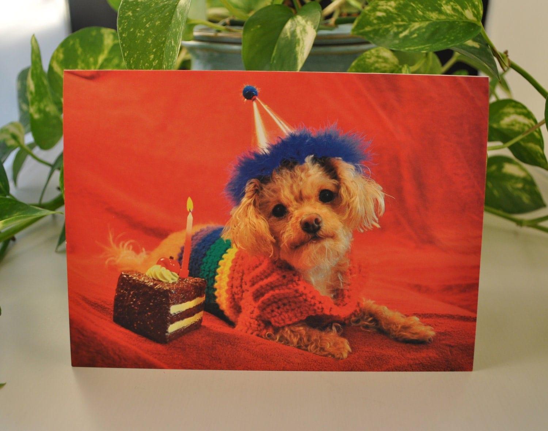 Gay Pride Greeting Card - Birthday Card. From TepperWear