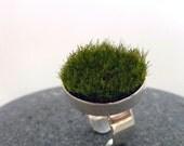 Gather, Circle Moss Ring