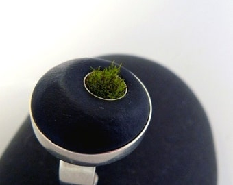 Set in Stone, Moss Ring