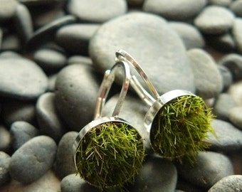 Gather Moss Earrings, Medium