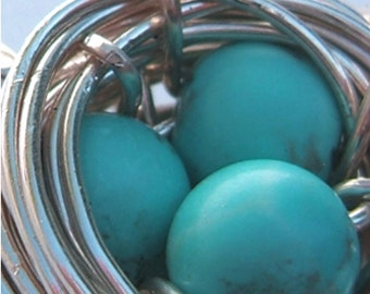 Bluebirds Nest Necklace