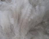 1 pound white baby alpaca fleece