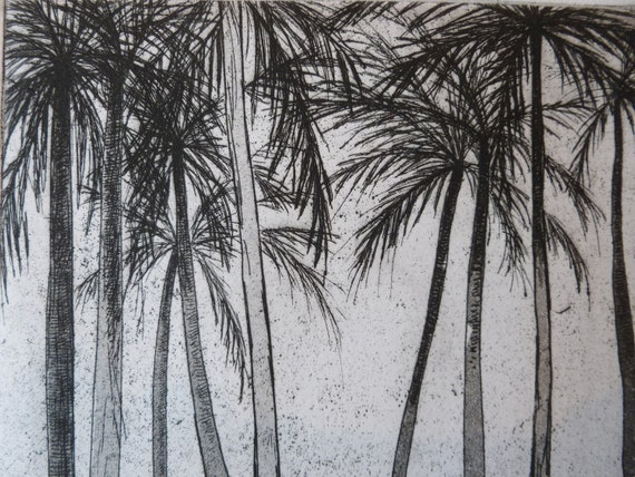 Palm Forest, acid line etching of palm trees 5 x 8 inches in black and white