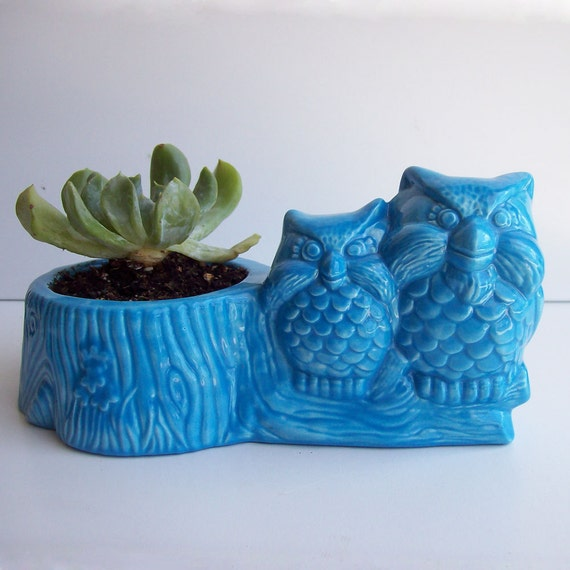 Owl Planter, Owls on Tree Stump, Windowsill Planter, Vintage Design Turquoise Succulent pot, Blue Room Decor, Plant Pottery, Gift for Mom