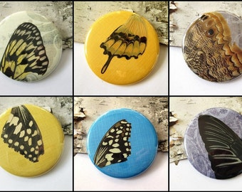 Real Butterfly Wing Pocket Mirror - Set of 6 assorted, discounted