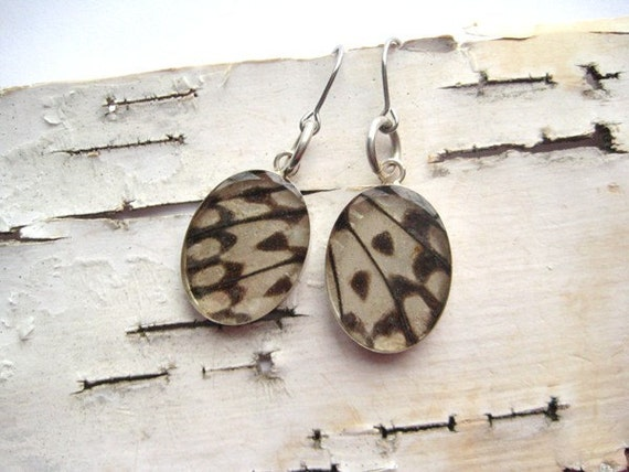 Real Butterfly Earrings, black and white paper kite wings