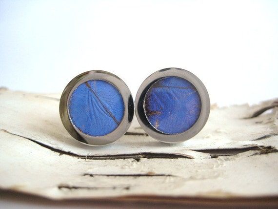 Blue Butterfly Wing Cuff Links for spring and summer - fly away with me - ready to ship
