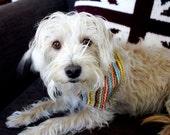 Knitting Dog Bandana for your Four legged Knitting Buddy - Retro Knitting Fabric
